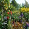 Giverny October